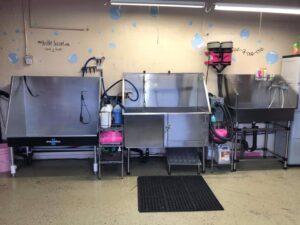 Dog washing stations